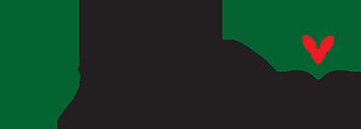 NKG Bloom Logo
